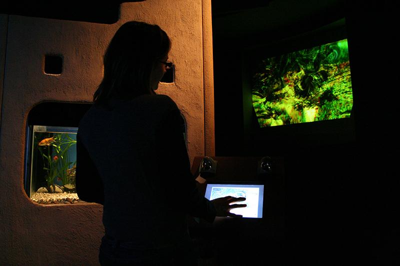 Bioma, Giochi d'acqua, veduta dell'installazione
