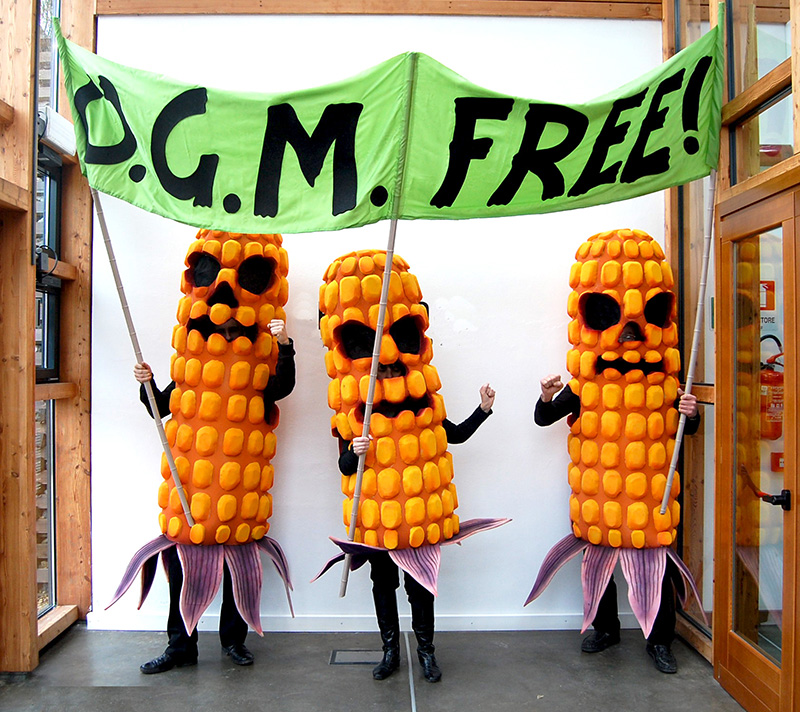 OGM Free, veduta dell'installazione